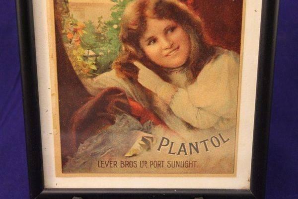 Framed Plantol Soap Print