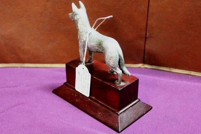 Louis Lejeune Guide Dog Mascot