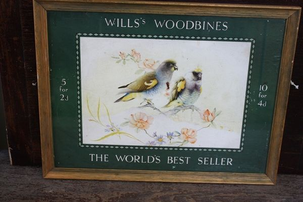 Wills Woodbine Framed Shop Display Card