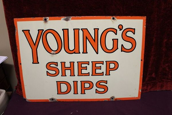 Youngs Sheep Dip