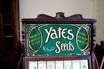 Antique Yates Seeds Shop Counter Cabinet Arriving Nov