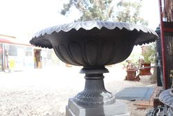 Cast Iron Toulouse Urn and Base