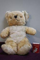 Early Plush Bear