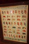 Framed Cig Cards