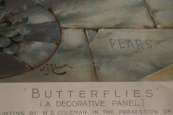 Framed Original Pears Print Butterflies